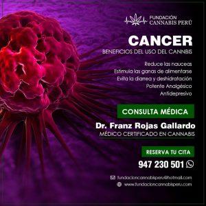 Cancer tratamiento medicinal cannabis lima