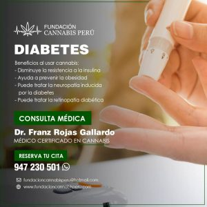 Diabetes tratamiento medicinal cannabis lima