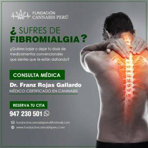 Fibromialgia tratamiento aceite cannabis lima